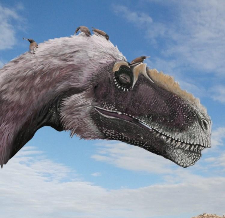 Dinossauros encolheram ao longo de 50 milhões de anos e tornaram-se aves